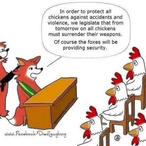 chicken security pic